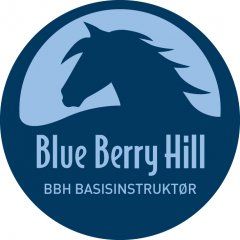 Blue Berry Hill